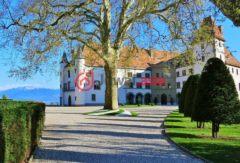 瑞士沃州阿拉芒的,2 Route de la Gare,编号36897754
