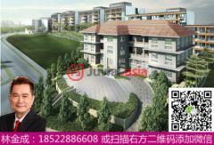 新加坡中星加坡新加坡的房产,Sophia Hills, 11 Mount Sophia,编号29800625
