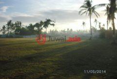 菲律宾宿雾的房产,Bogo - Curva - Medellin - Daanbantayan - Maya Road,编号36904788