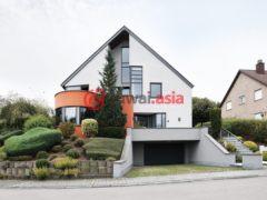 卢森堡5卧1卫的房产