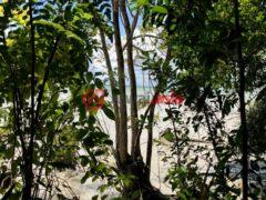 居外网在售伯利兹Corozal的房产总占地9915平方米USD 139,900