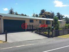 新西兰派希亚3卧2卫的房产