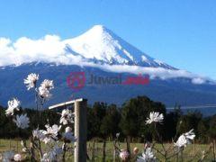 居外网在售智利Puerto Varas3卧2卫的房产总占地43000平方米CLP 271,652,997