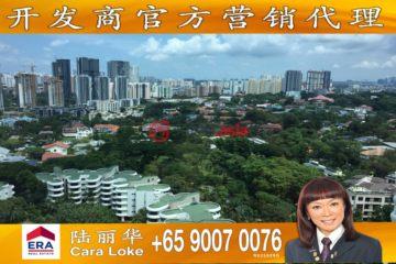新加坡新加坡5卧7卫新开发的房产