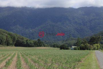 居外网在售澳大利亚WhyanbeelAUD 550,000总占地290000平方米的土地