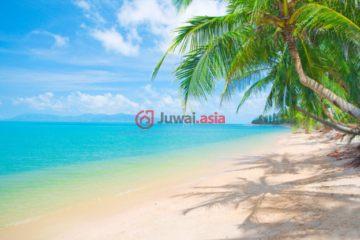 居外网在售开曼群岛USD 45,000总占地1254平方米的土地
