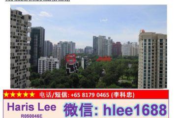中星加坡房产房价_新加坡房产房价_居外网在售新加坡3卧3卫新开发的房产总占地15718平方米SGD 5,500,000