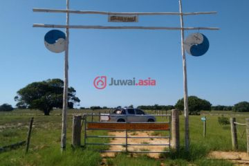 居外网在售巴西利尼亚雷斯USD 1,500,000总占地1113平方米的乡郊地产