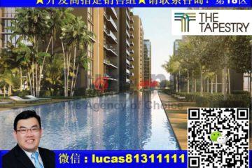新加坡新加坡2卧2卫新房的房产