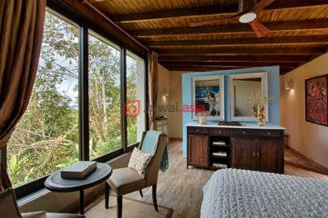 居外网在售波多黎各巴亚蒙6卧5卫的房产总占地64750平方米USD 2,500,000