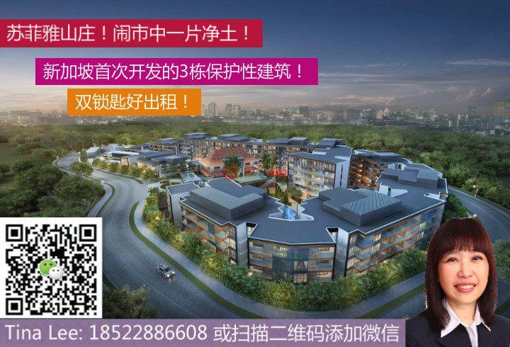 新加坡中星加坡新加坡的房产,11 Mount Sophia,编号29800625