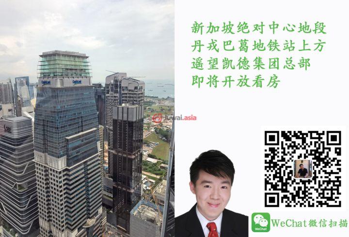 新加坡中星加坡新加坡的房产,Tanjong Pagar 丹戎巴葛,编号33059640