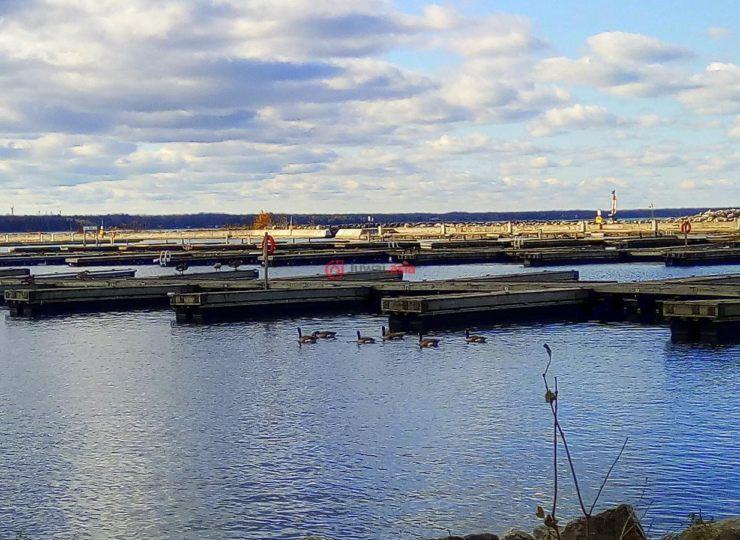 加拿大安大略省port elgin4臥的房產