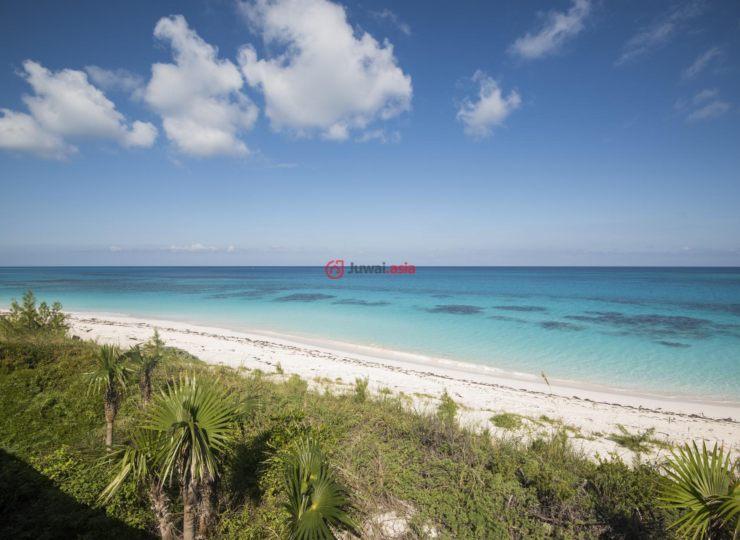 巴哈马的房产,Love Shack,编号36822882