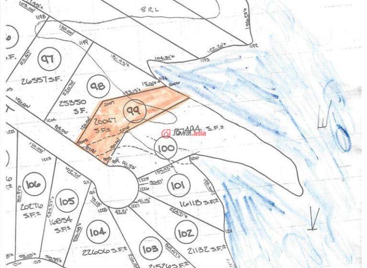 纽约手绘地图卡通